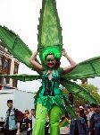 Cannabis_Jayday16.jpg